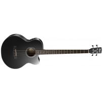 Акустическая бас гитара Cort AB850F (BK) with Bag